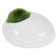 "Fluval Ceramic Ornament with Moss - White - Small - 10 x 8.4 x 5.9 cm (3.9"" x 3.3"" x 2.3"")"