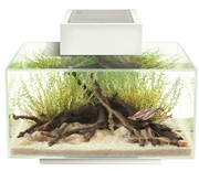 Fluval Edge 2.0 46L Aquarium Gloss White