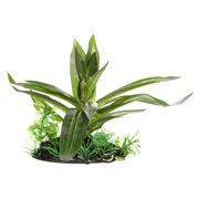 """Fluval Giant Sagittaria - Small - 10 cm (4"""") with base"""