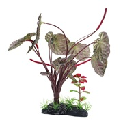 """Fluval Large Red Lotus- 25cm (10"""") with Base"""