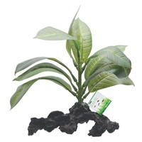 "Fluval Decorative Plants, Stemped Anubias, 17cm (7"") on Root"