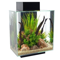 Fluval Edge 46L (12 US gal) Aquarium Set - Black
