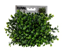 Fluval® Chi Boxwood Ornament