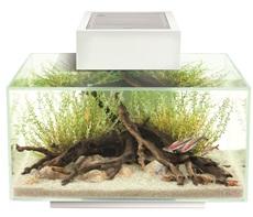 Fluval Edge 2.0 46L Aquarium Gloss White