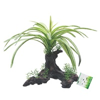 "Fluval Decorative Plants, Fountain Plant, 25 cm (10"") on Root"