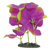 "Marina Naturals Indigo Moneywort Foreground Silk Plant - Small - 12.5 - 15 cm (5-6"")"