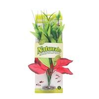 Marina Naturals  Red & Green Pickerel Silk Plant, L