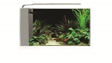 Fluval Spec Aquarium Kit - White - 19 L (5 US gal)