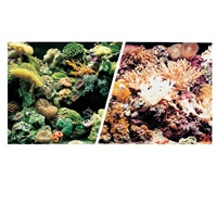 "Marina Double Sided Aquarium Background, Marine Reef/Coral Scenes,  30.5 cm X 15.2 m (12"" X50 ft)"