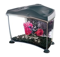 Marina Betta Kit Graphite, 7L