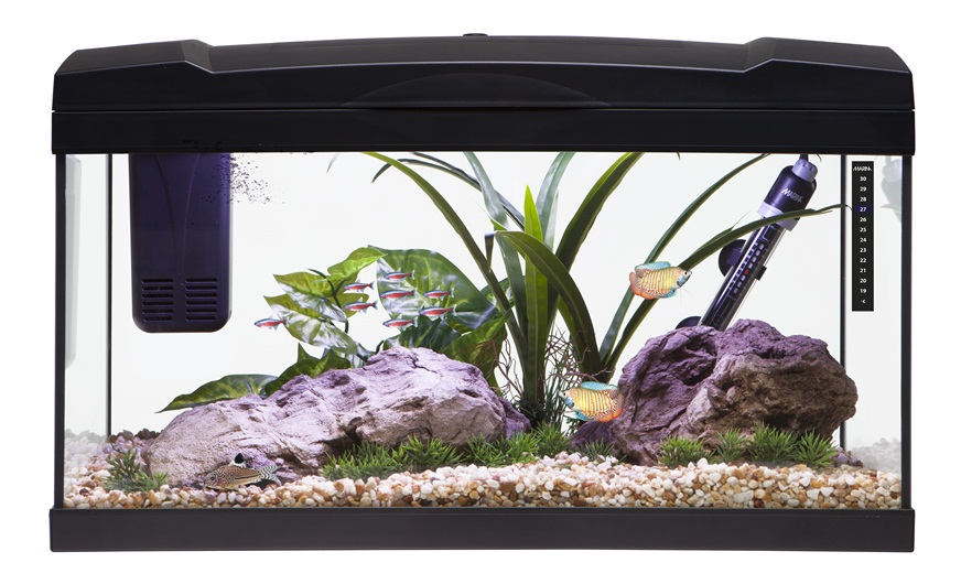 15169 Marina Premium 54 Aquarium Set Black
