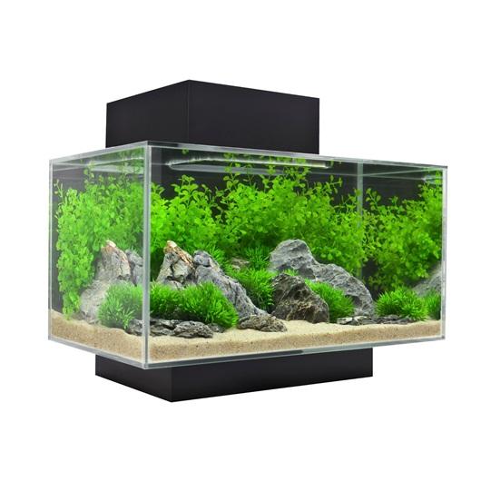 15385 fluval edge 23l 6 us gal aquarium set black. Black Bedroom Furniture Sets. Home Design Ideas