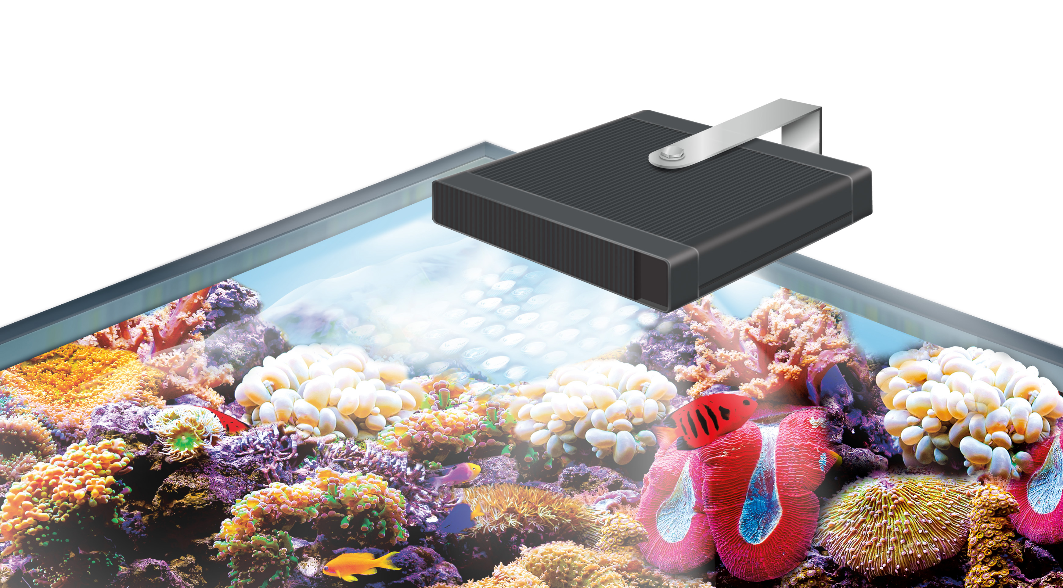 Nano led aquarium fish tank lighting - Got A Smaller Marine Tank We Have The Solution The Nano Marine And Reef Performance Led Lamp