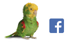 Join our Hagen Bird Care community